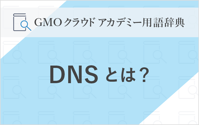 170421_dic-DNS_mv